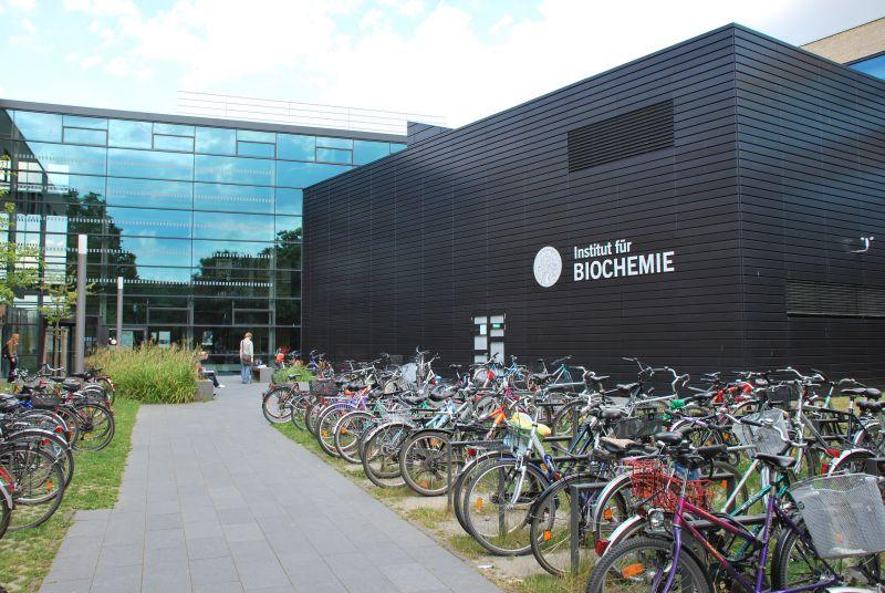 Studium am Institut für Biochemie - Fakultät - Universität Greifswald